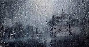 4K Rain Video Wallpaper – отличные живые обои на ваши андроид устройства.